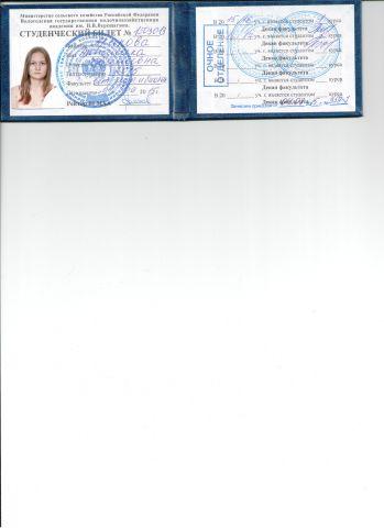 AngelikaArapova (document)